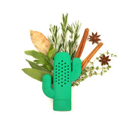 Porta e distribuisci aromi a forma di cactus, , large