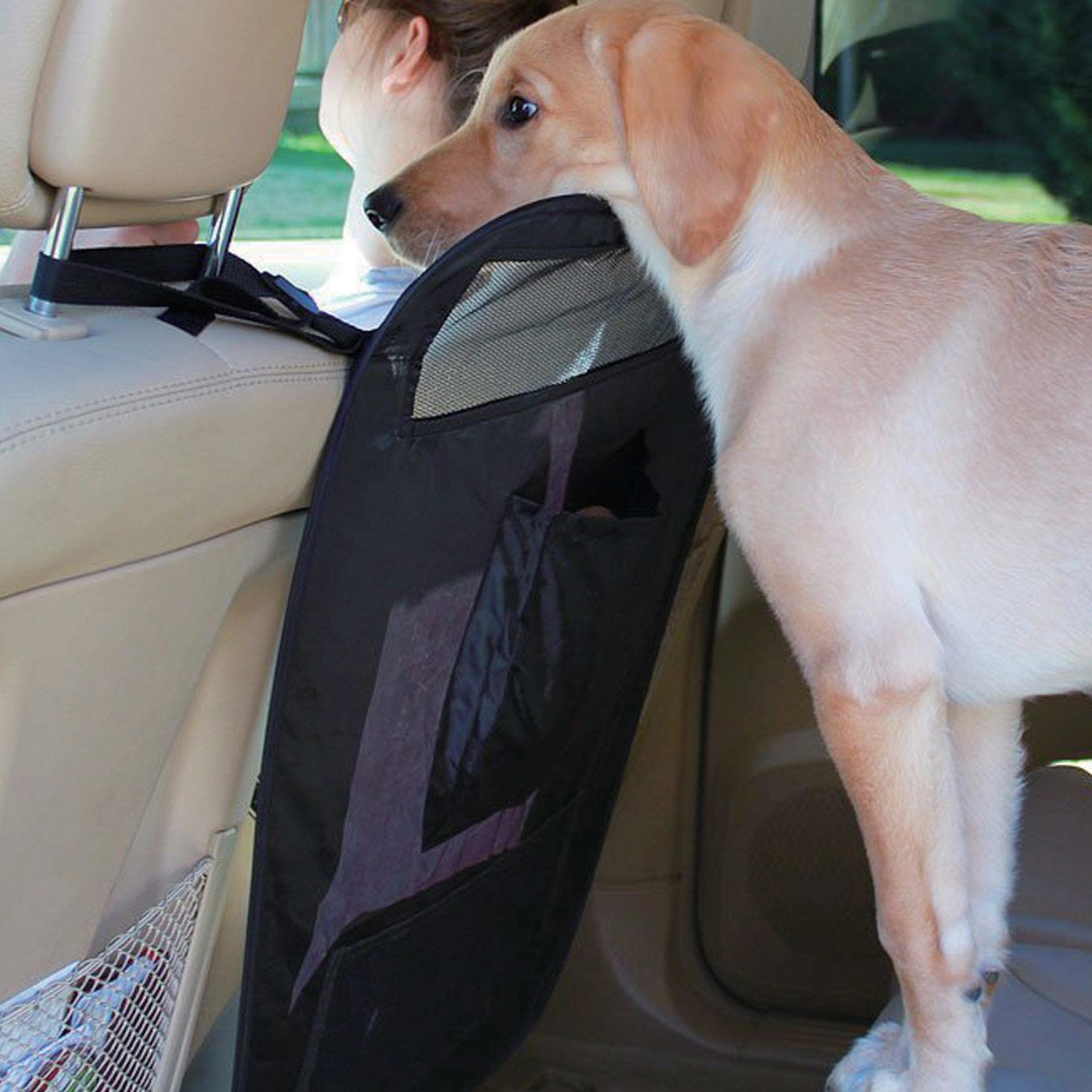 Barrière de voiture pour chiens, , large