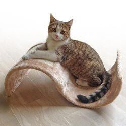 Gioco ad onda e tiragraffi per gatti, , large