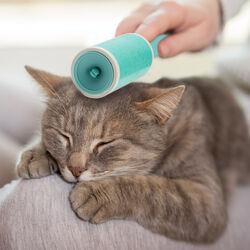 Spazzola adesiva pulizia pelo gatto, , large