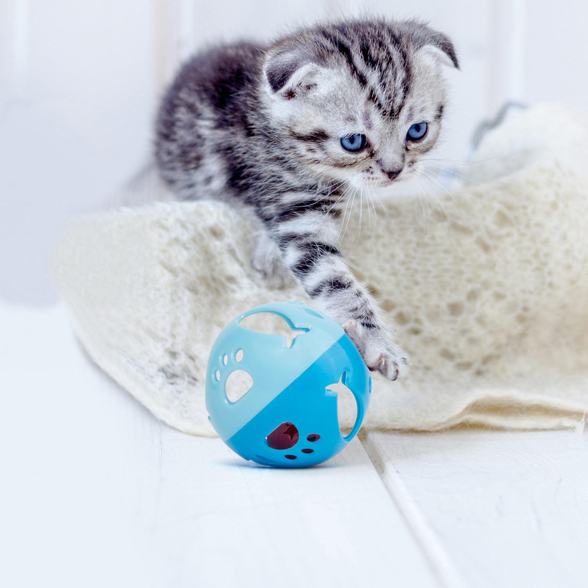 Balle de jeu pour chats, , large