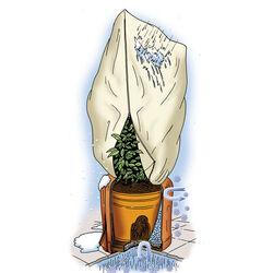 Set protezione dal freddo per piante in vaso, , large