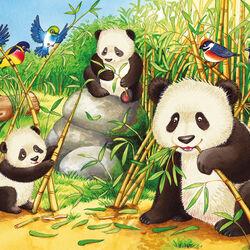 Ravensburger Puzzle 2x24 pezzi 07820 - Dolci Koala e Panda, , large