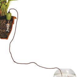 Floralì: Irrigatore universale - Set 2 pz., , large