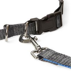 Cintura con guinzaglio per cani, , large
