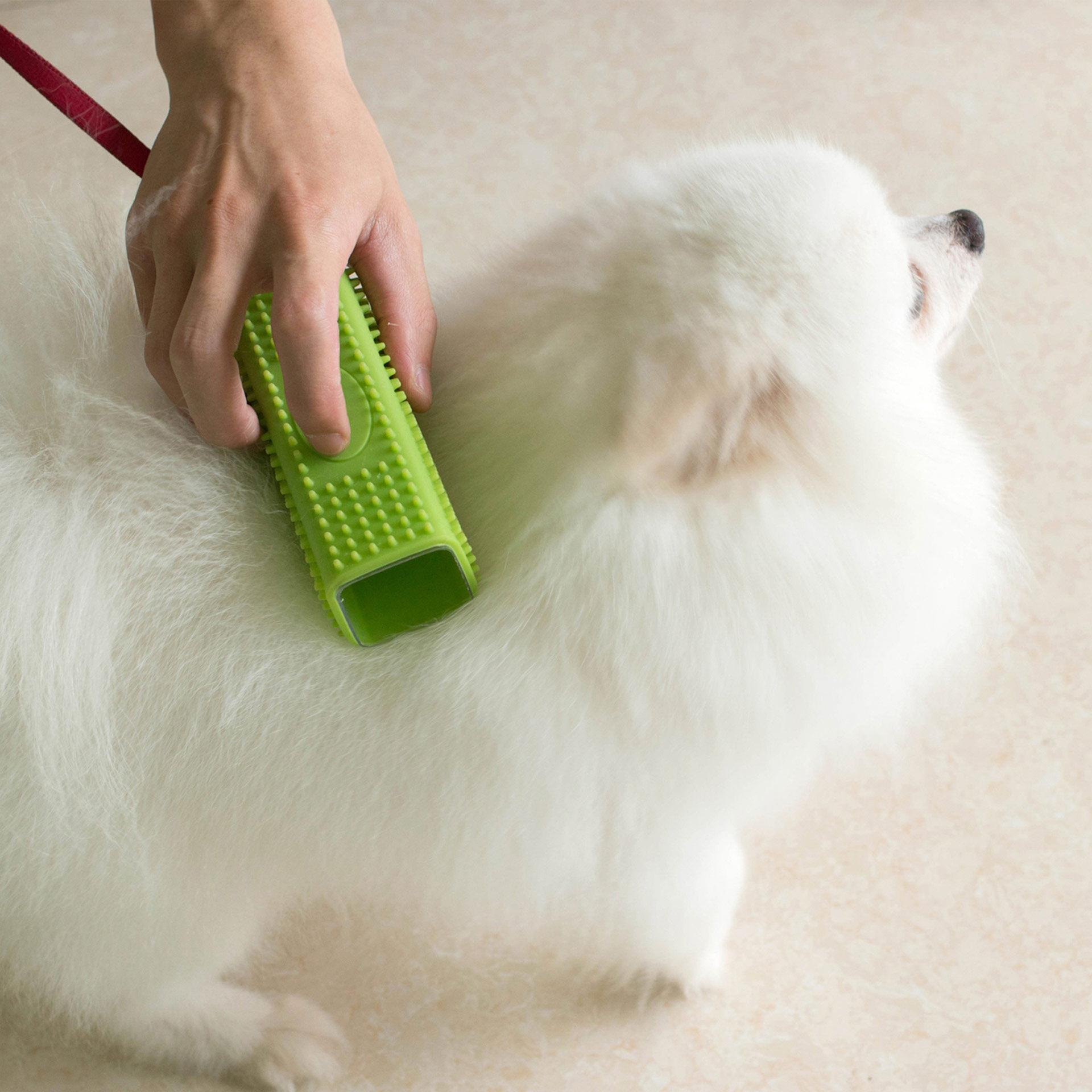 Brosse pour enlever les poils des animaux, , large