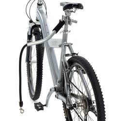 Supporto da guinzaglio per bicicletta, , large