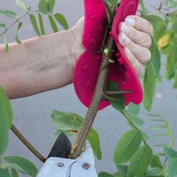 Protezione per giardinaggio, , large