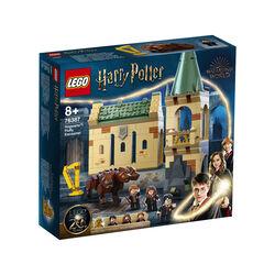 Hogwarts: Incontro con Fuffi 76387, , large