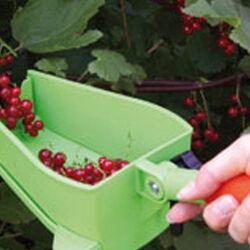Frupy: Set per raccogliere piccoli frutti, , large