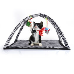 Tenda gioco pop up per gatti, , large