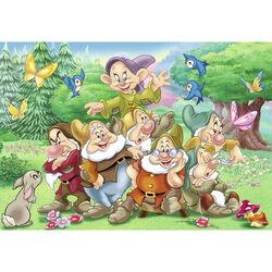 Ravensburger Puzzle 2x24 pezzi 08859 - I sette nani, , large