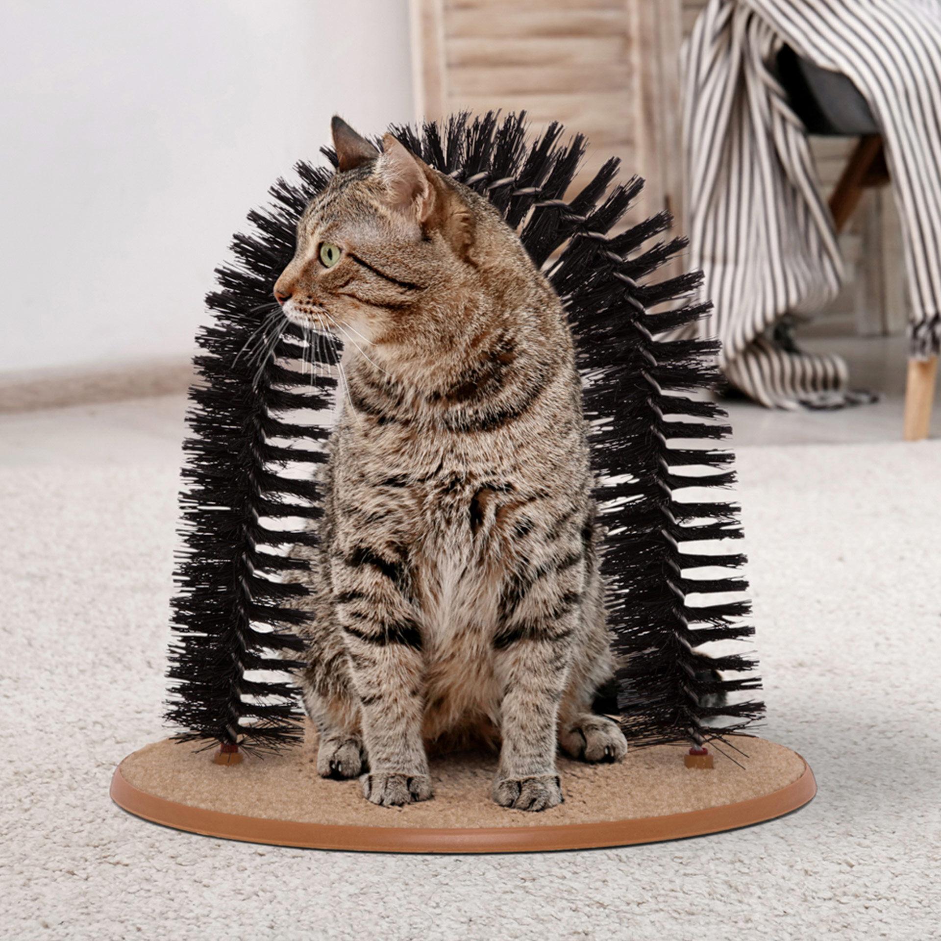 Jeu de brosse et griffoir pour chat, , large